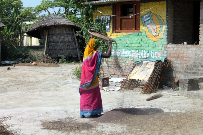 5. A woman separates chaff from the grain in rural Bihar